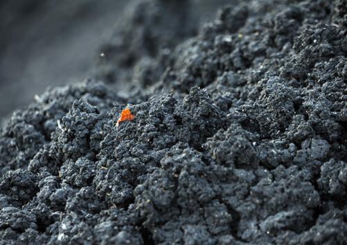 Klärschlamm bleibt nach der Abwasserreinigung als Reststoff zurück.